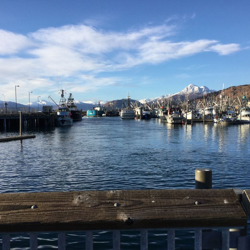 Kodiak Harbour